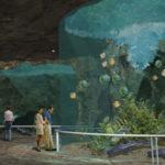 zoo-aqua