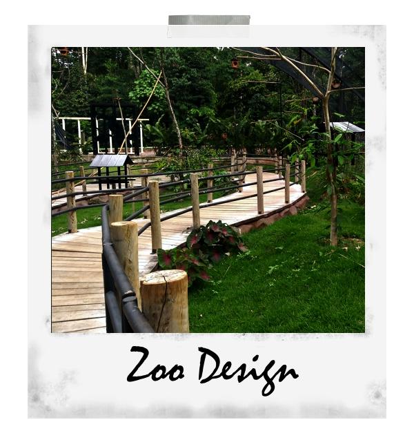 Zoodesign3