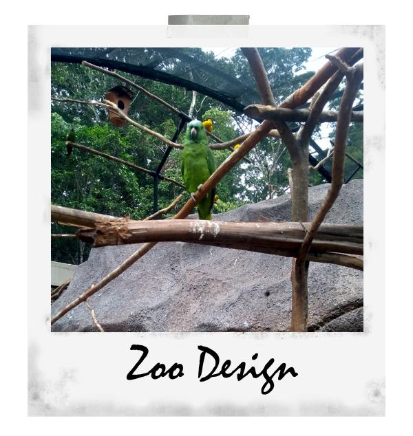 Zoodesign5