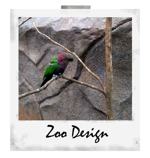 Zoodesign6