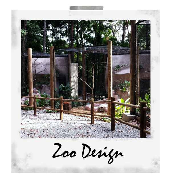 Zoodesign7